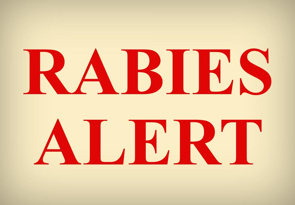 狂犬病は外国ではまだ現役 海外出張・旅行時の予防ポイント