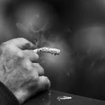 タバコもPM2.5 大気汚染を気にするなら禁煙は絶対に行うべきこと