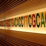 知力、体質、センス 遺伝で親から受け継がれる範囲 ~総合編~