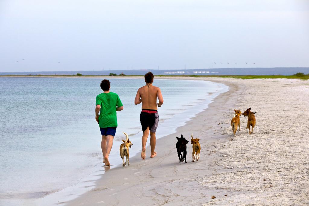 散歩程度のちょっとした運動習慣でも癌の予防にもなる